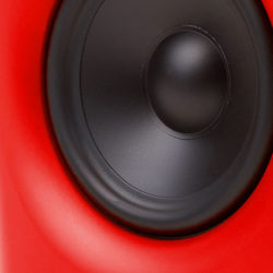 5.25 woofer with a polypropylene membrane